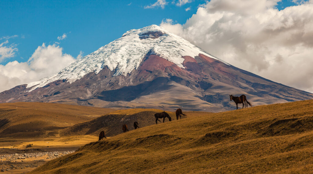 Distant view of the snowy cone of the crater of Cotopaxi from a main road in Ecuador