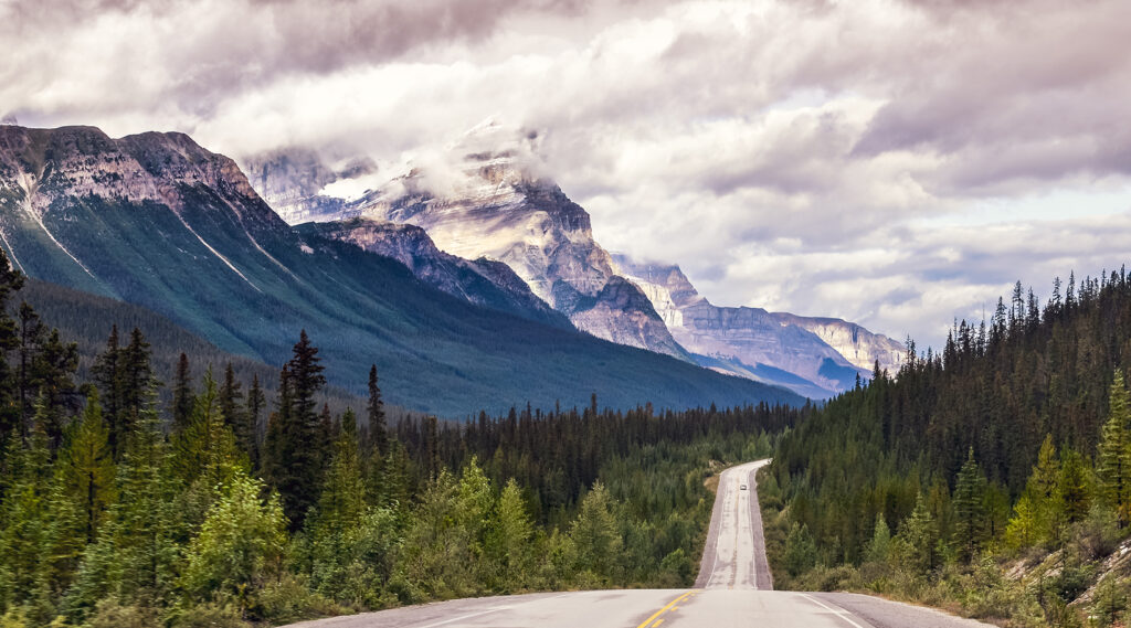 Right line road of the Icefields Parkway surrounded by forests and mountains